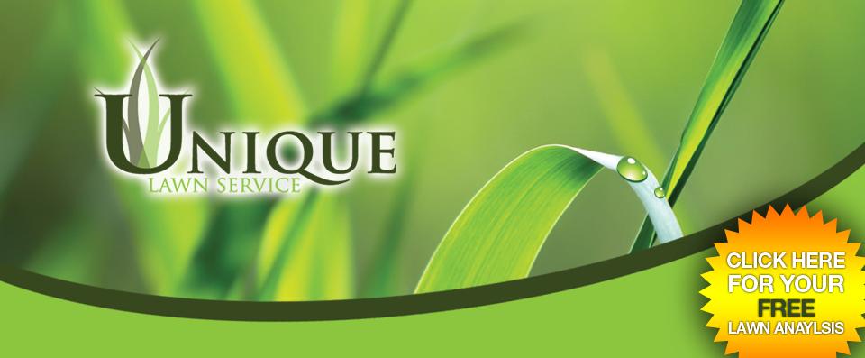Cool Landscape Company Names 28 Images 31 Unique Landscape Logo Design Ideas 2016 Uk Usa