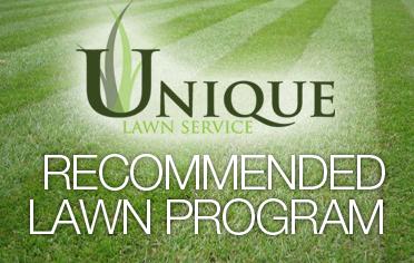 Unique Lawn Service | #1 Greensboro Lawncare Company